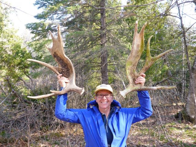 Loreen Niewenhuis on Moosewatch Expedition, Isle Royale