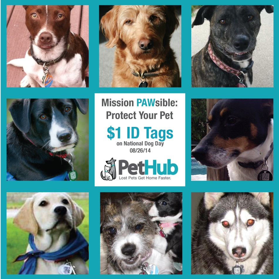Some of PetHub.com's Pack Members (collage 1)