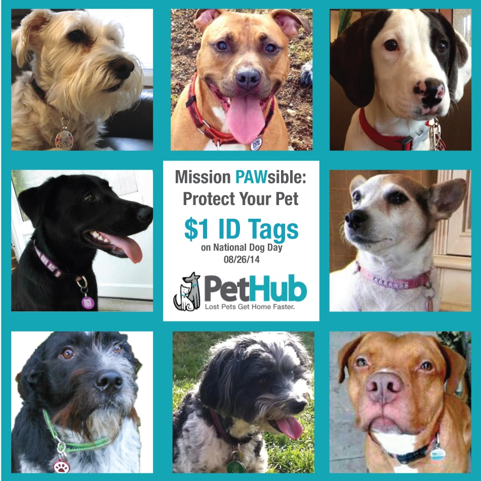 Some of PetHub.com's Pack Members (collage 2)