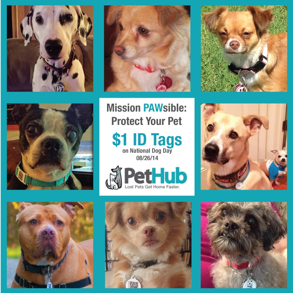 Some of PetHub.com's Pack Members (collage 4)