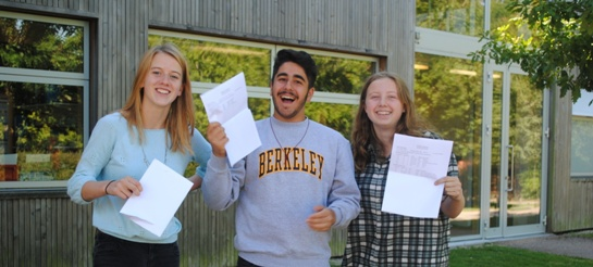 Best ever Bedales GCSE performance at top grade