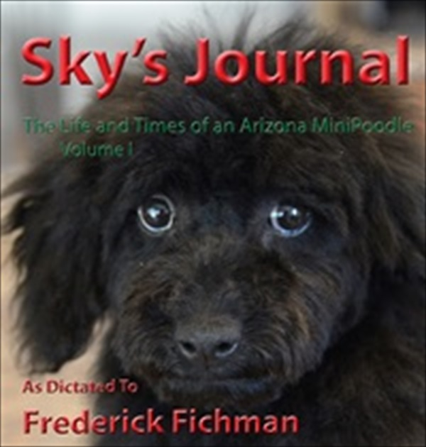 Sky Journal Coververy small