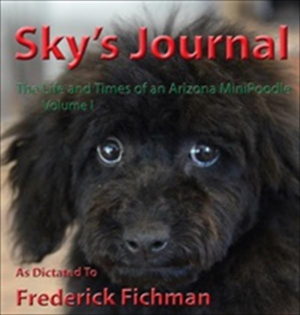 Sky Journal Coververy small