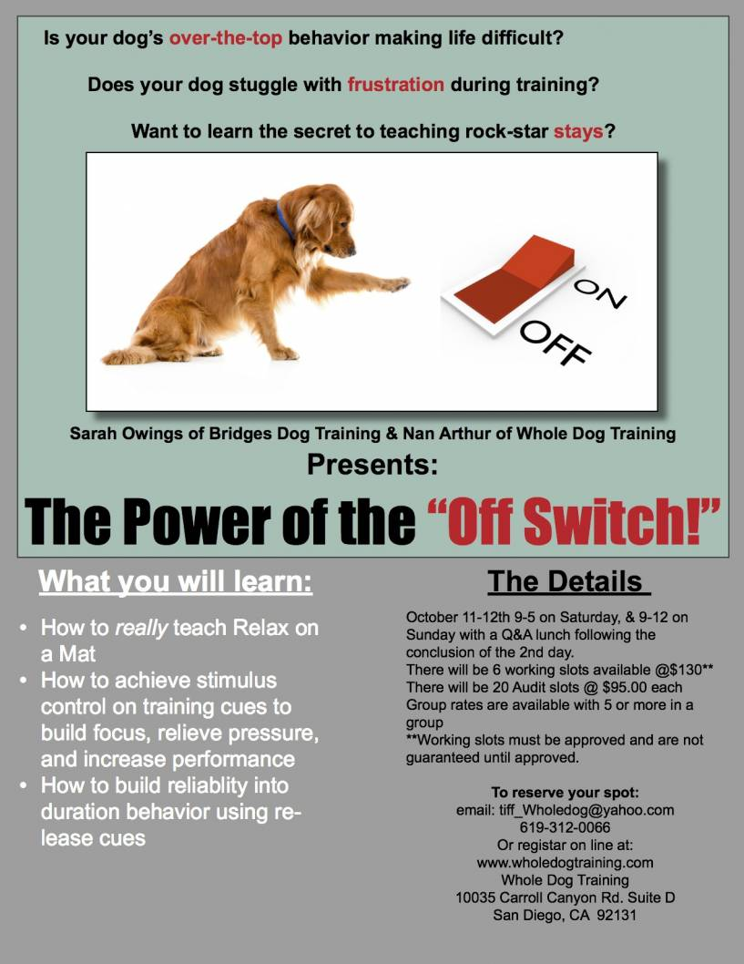 Power of The Off Switch Flyer