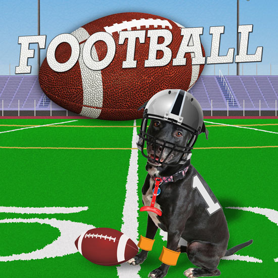 Football Photo Editor App for iPad and iPhone - Free Download on iTunes