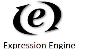 Expression Engine Development