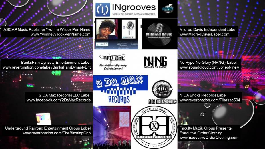 Independent Music Industry Network Project