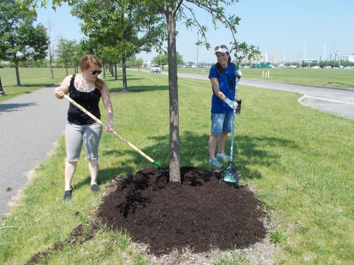 PVH employees working on a beautification project in Liberty State Park