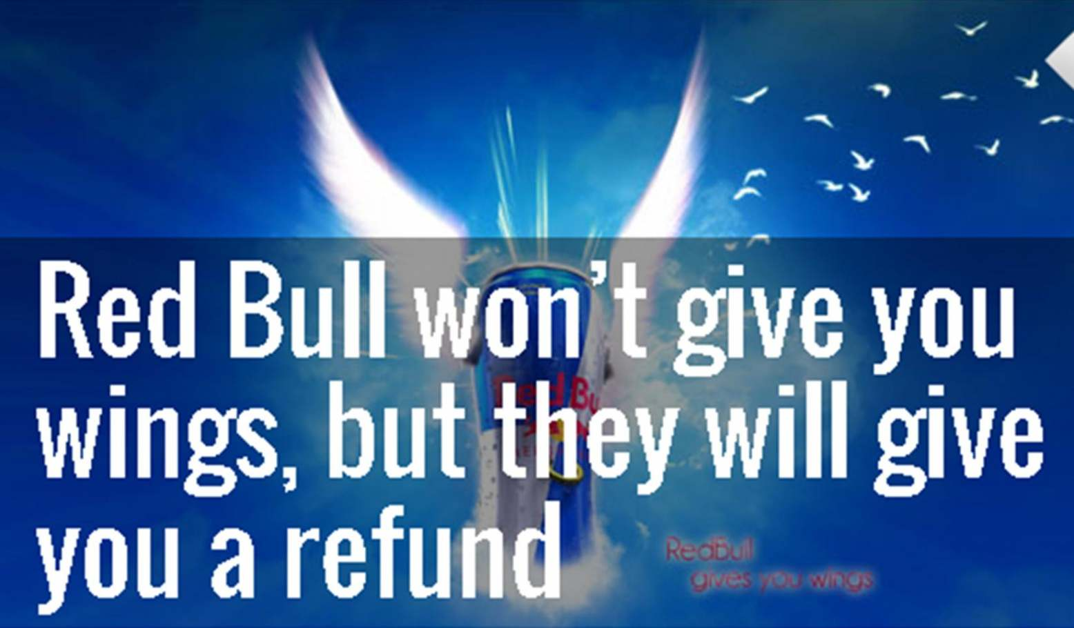 red bull won t give you wings but they will give you a refund
