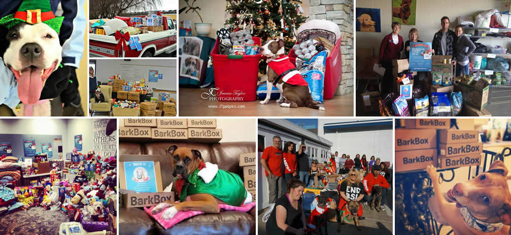 """""""Monster"""" Elves collecting toys & treats for shelter animals across the country."""