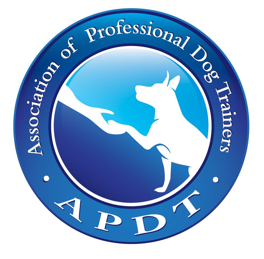January Is National Train Your Dog Month -- The