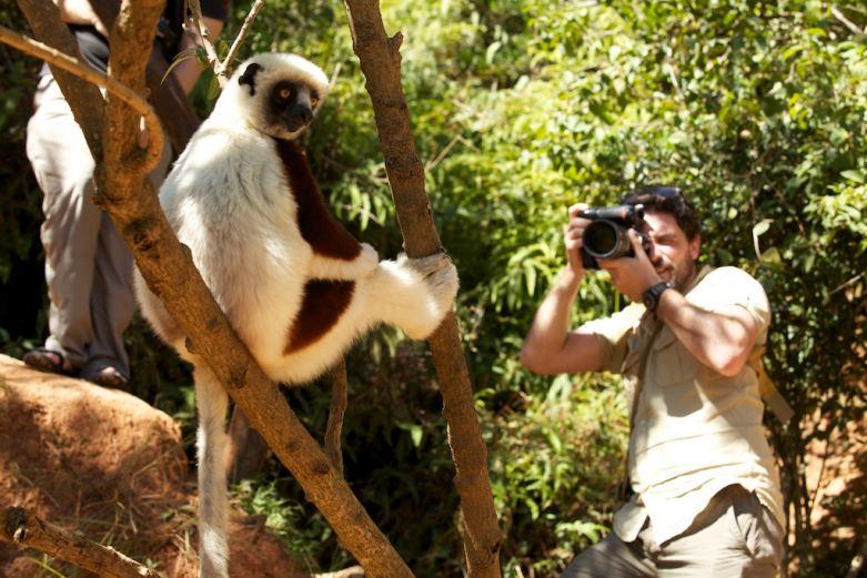 Secret Compass co-founder Levison Wood photographs one of Madagascar's lemurs.