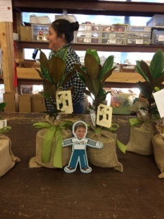 Flat Hunter with some magnolia plants in the shop.