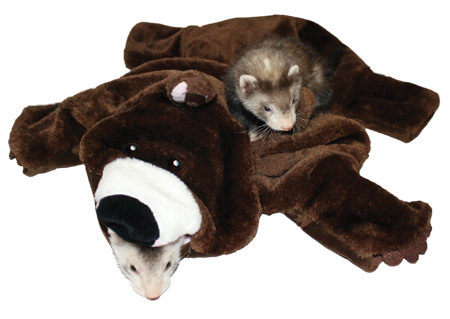 Bear Rug for Small Pets