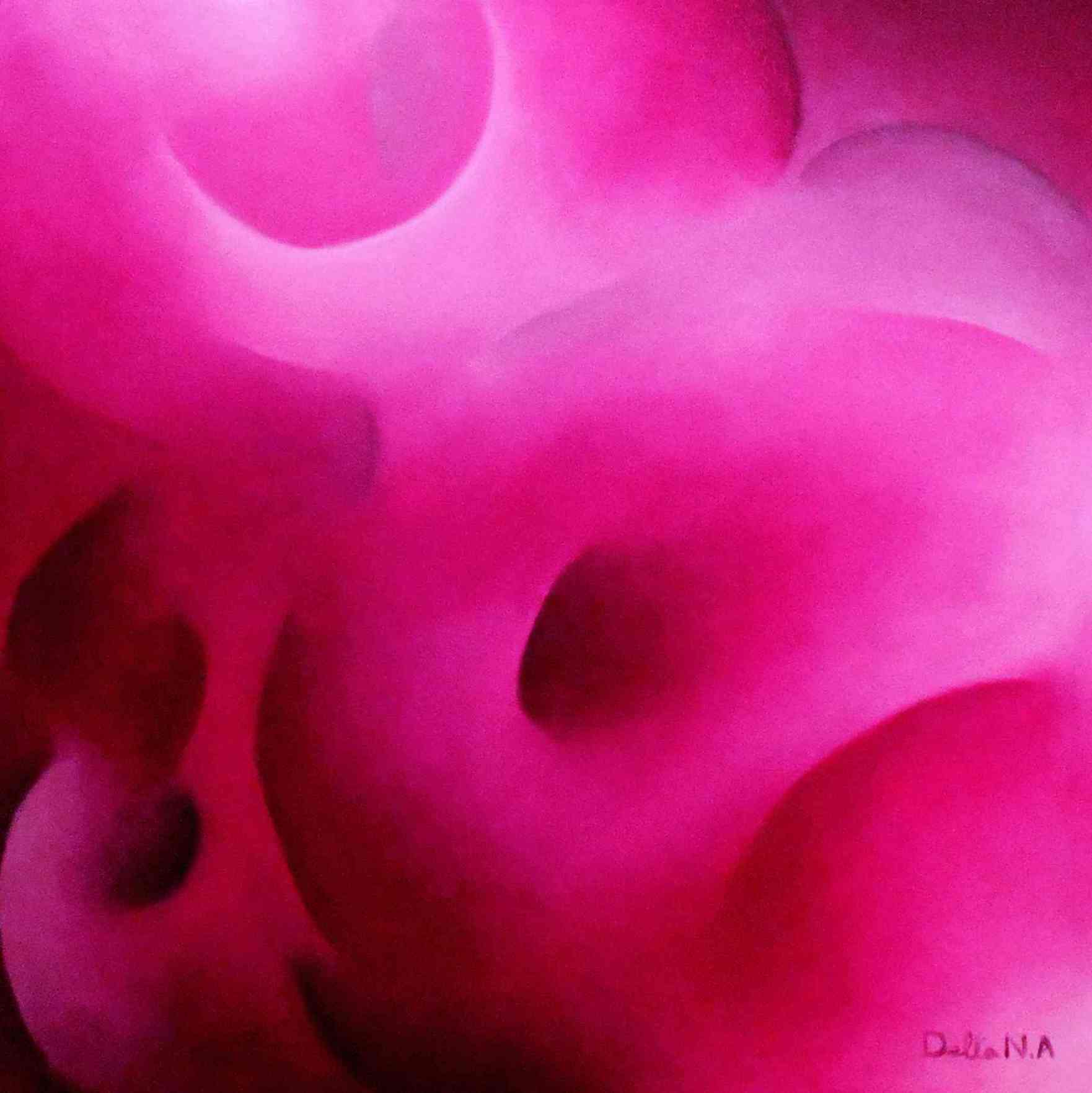 Armonia Magenta, 50 x 50 cm, Oil on Canvas 2014 Delta N.A.