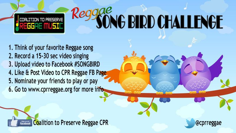 Song Bird Challenge Flyer