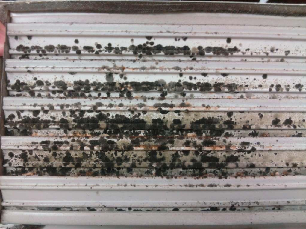 Air Conditioning Register Mold