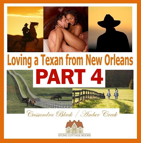 Loving a Texan from New Orleans, Part 4, Stone Cottage Books