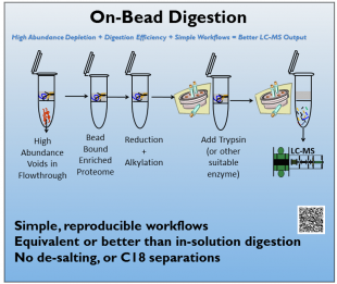 biotechsupportgroup_AlbuVoid™ On-Bead Digestion