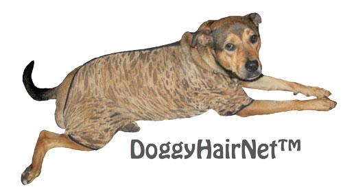 doggyhairnets stops shedding dog hair