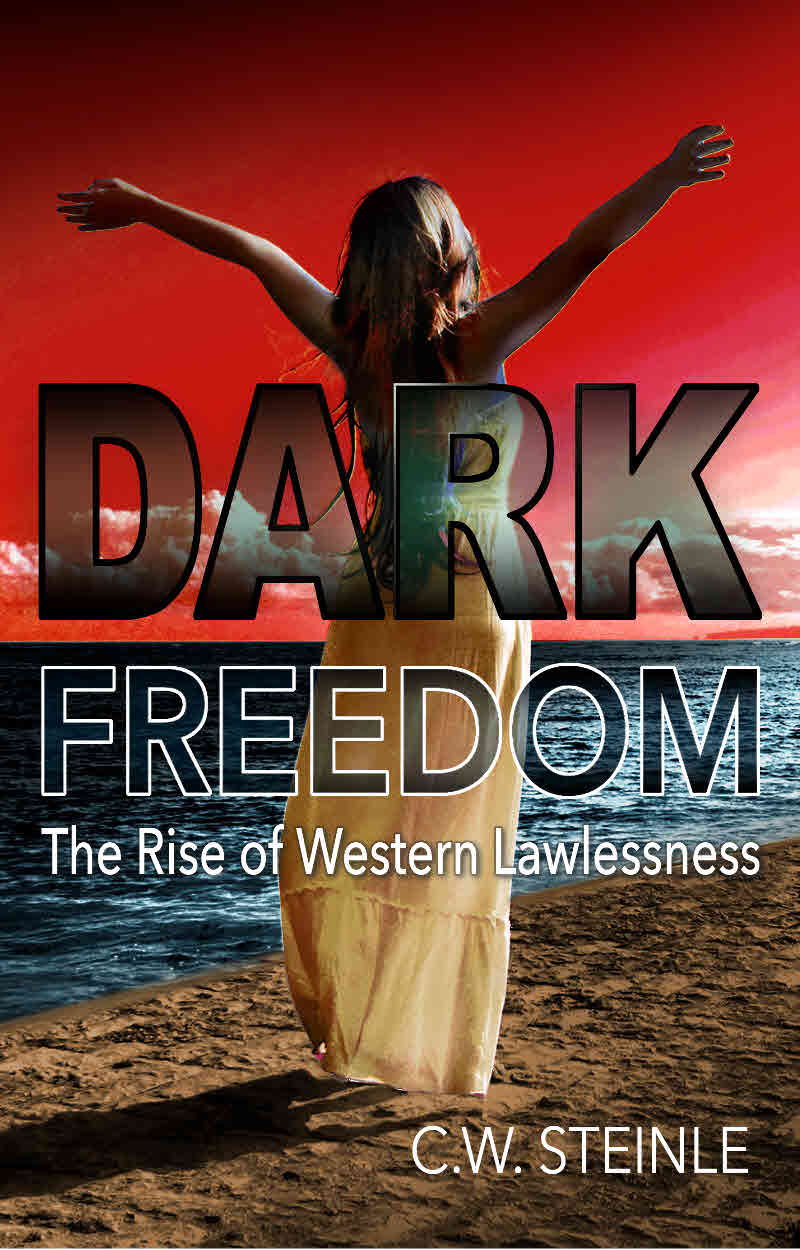 Dark Freedom Cover