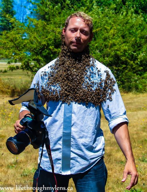 Photo Warrior Bee Beard!