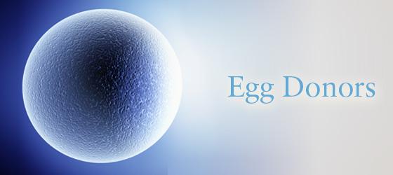 egg donar