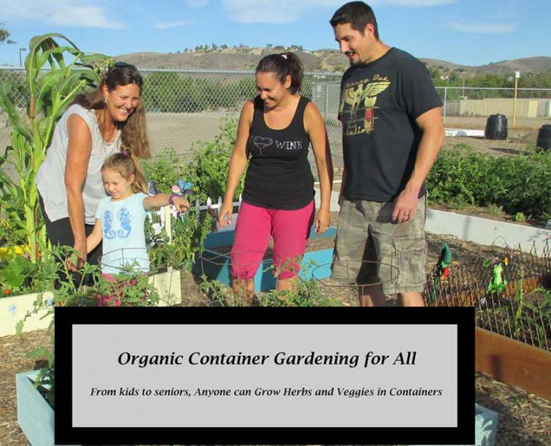 A raised bed garden is one way to grow chemically free food in a contained area.
