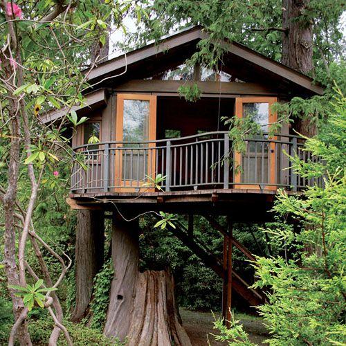 Merveilleux Treehouse Builders