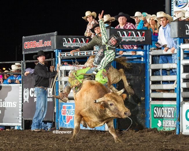 Tanner Bothwell, Rapid City bull rider takes on World Champs at SD Fair