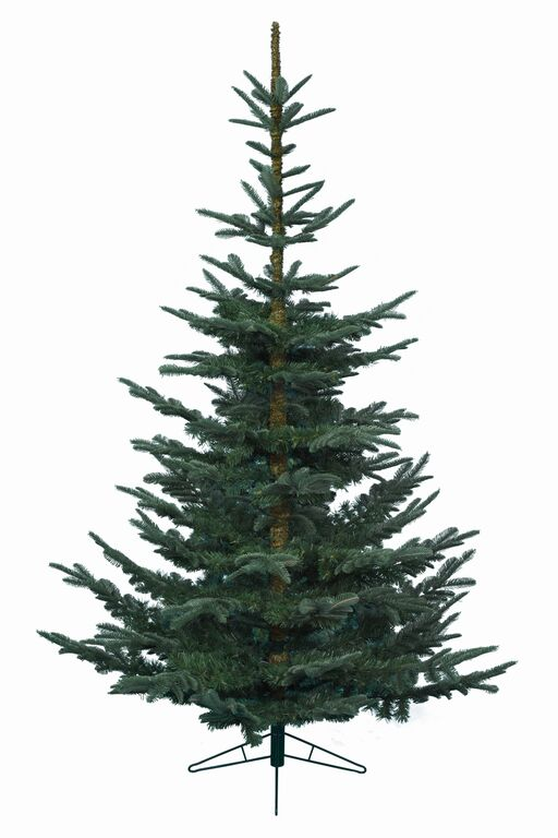6ft Nobilis Fir Artificial Christmas Tree Available To Buy