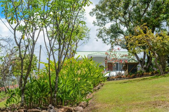 Explore The Beauty Of Caribbean: St. Lucia's Barefoot Holidays Announces 'Greenwood Terrace