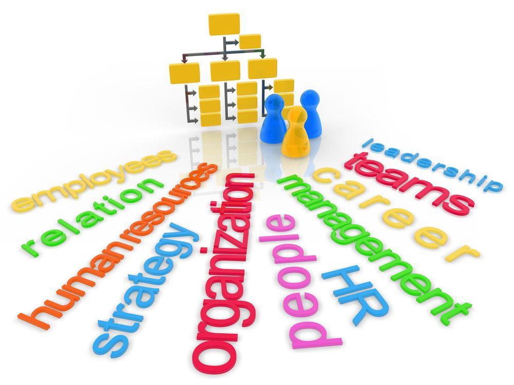 Konsultan OD - Organization Development Consultant