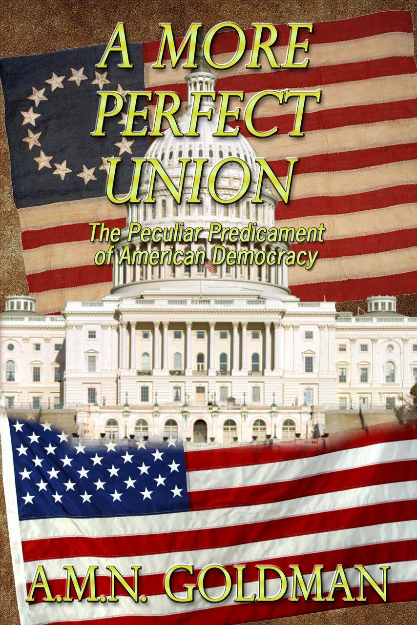 A More Perfect Union by AMN Goldman