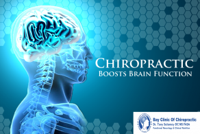 Chiropractic Neurology Service Is Available With Dr Tony Salamay