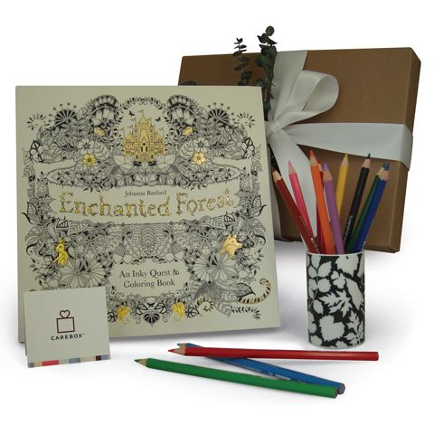 Enchanted Adult Coloring Book With Colored Pencils