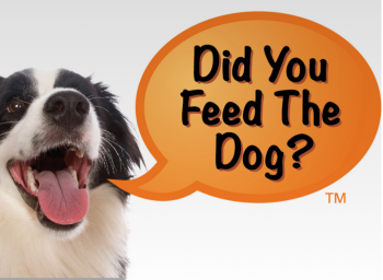 did you feed the dog launches a simple solution to a common
