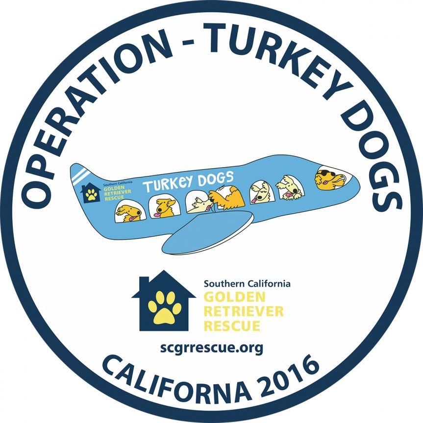 Rescue a golden retriever california