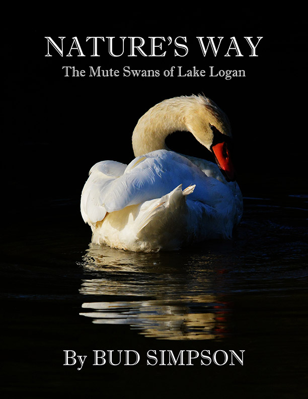 Nature's Way: The Mute Swans of Lake Logan, Ohio by Bud Simpson