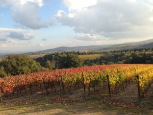 Beautiful Italian Countryside