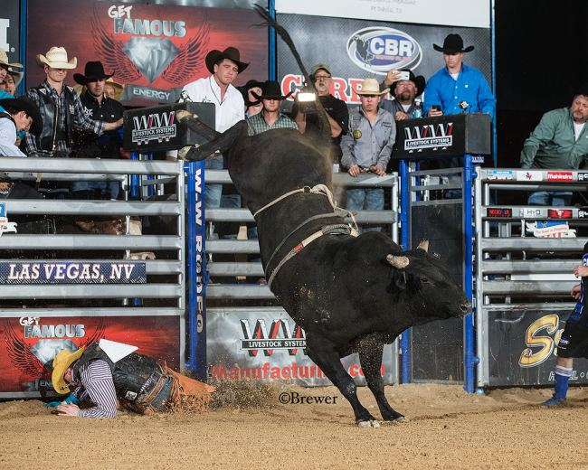 The Equalizers Of The Las Vegas Cbr Bull Team Challenge