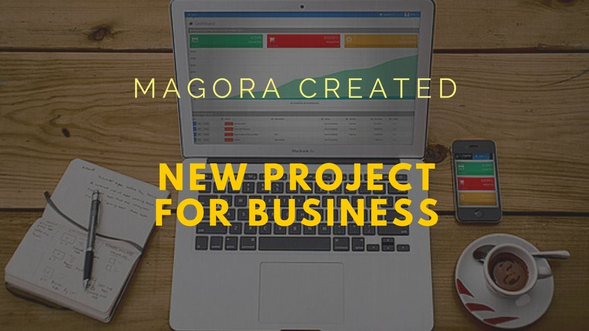 Case examples of Magora's new bespoke software for companies