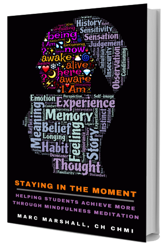 Staying In The Moment - Book Cover