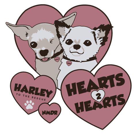 Harley & Teddy - Hearts 2 Hearts