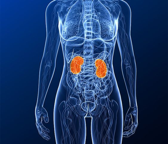 Gallstone Natural Treatment In India