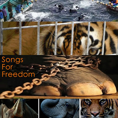Songs For Freedom