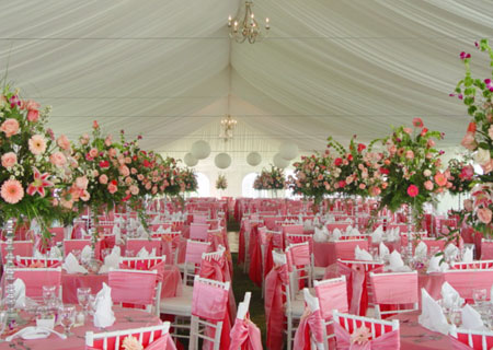 Tent Rental Company in Hollywood, FL