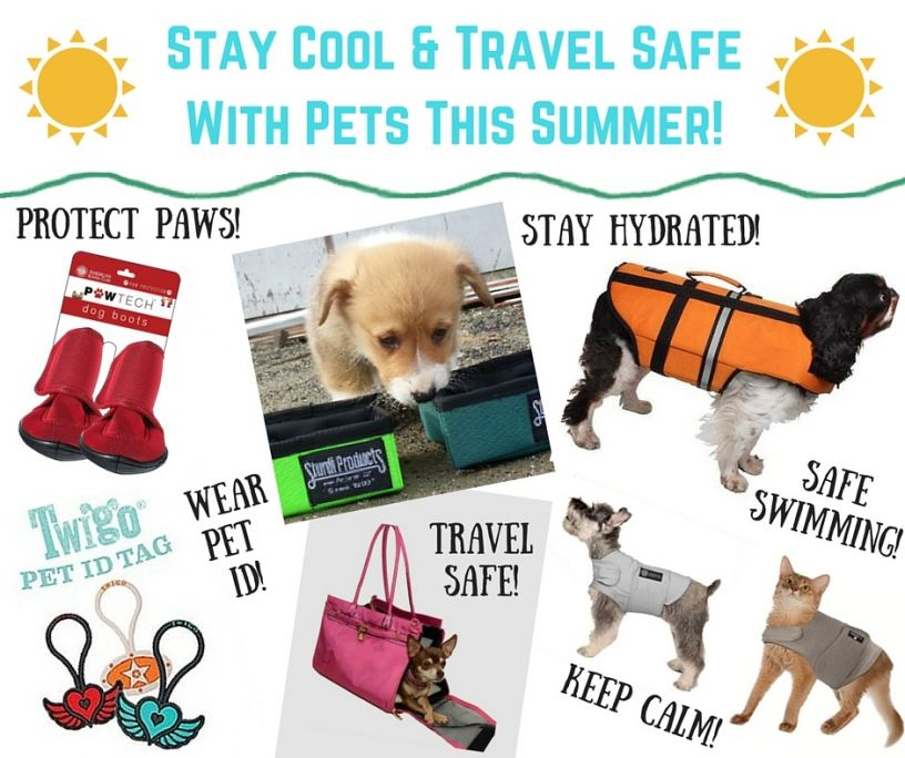 Stay Safe When Traveling Turkey: Stay Cool & Travel Safe With Pets This Summer With These