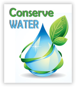 IrriGreen Achieves Water Savings Unimaginable with Ordinary Irrigation Systems