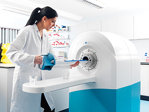 Preclinical MRI system from MR Solutions.